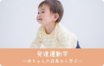発達運動学 赤ちゃんの成長から学ぶ